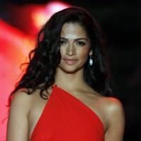 Camila-Alves-Hot-Wallpaper