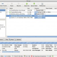 Deluge-BitTorrent-Client-For-El-Capitan
