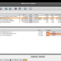 qBittorrent-Mac-OSX