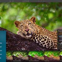 , Download Luminar For Mac