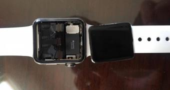 , Lawsuit Claims All Apple Watches Come with a Defective Display