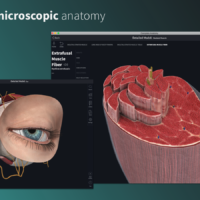 Anatomy Platform 2020, Download Complete Anatomy Platform 2020 For Mac